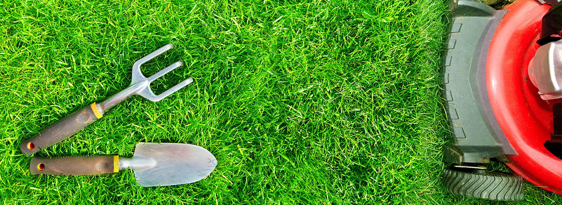 Gartenpflege und Rasenpflege